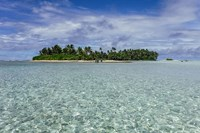 foto: island conservation
