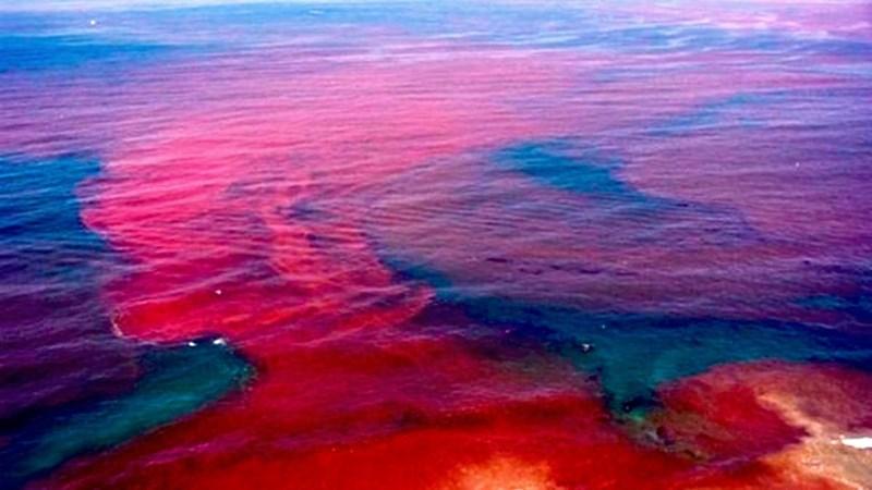 Fabelhaft Rote Flut