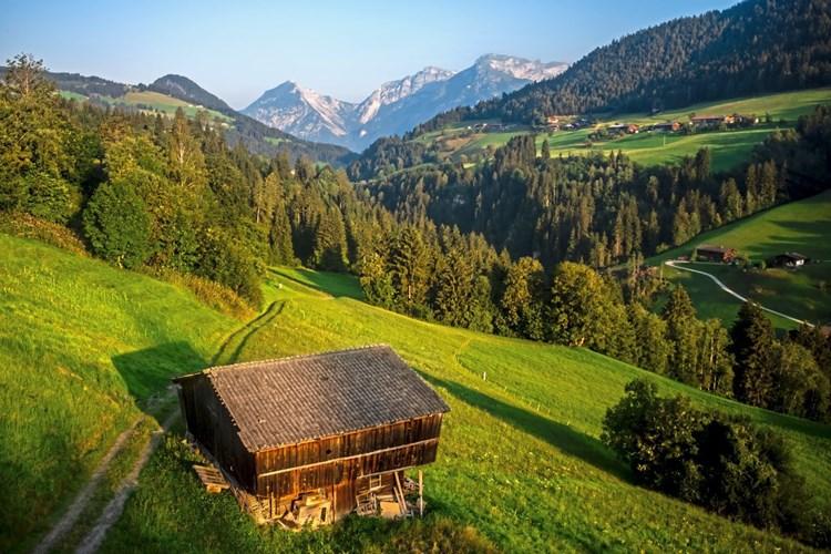Alpbach sie sucht ihn kreis: Pasching stadt partnersuche