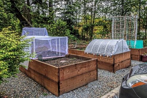 Wintergemuse Im Hochbeet Selbst Ziehen Garten Derstandard At