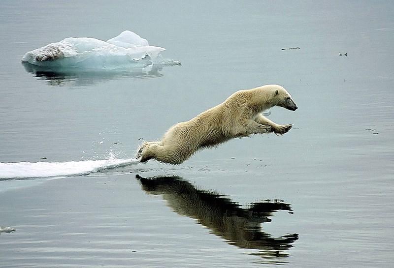 Klimawandel Stoppen Maßnahmen