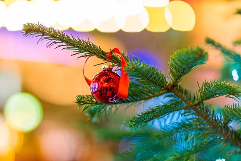 Zu Weihnachten.Die Acht Größten Fehler Zu Weihnachten Psyche Derstandard At