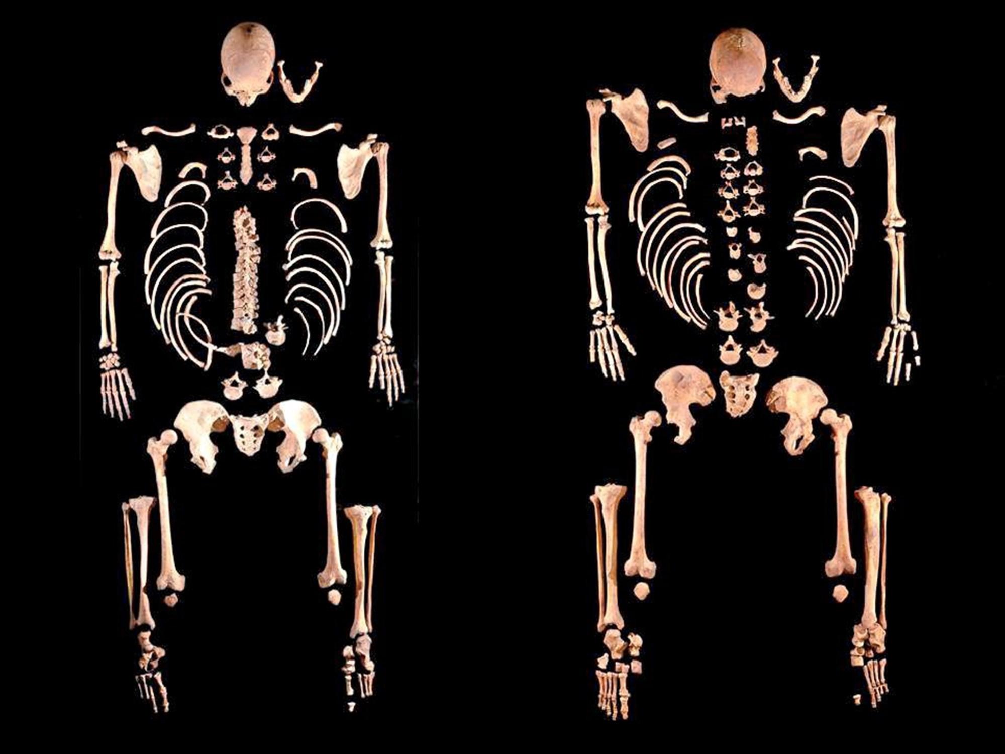 Alte DNA gibt neue Einblicke in die Besiedelung der Iberischen Halbinsel