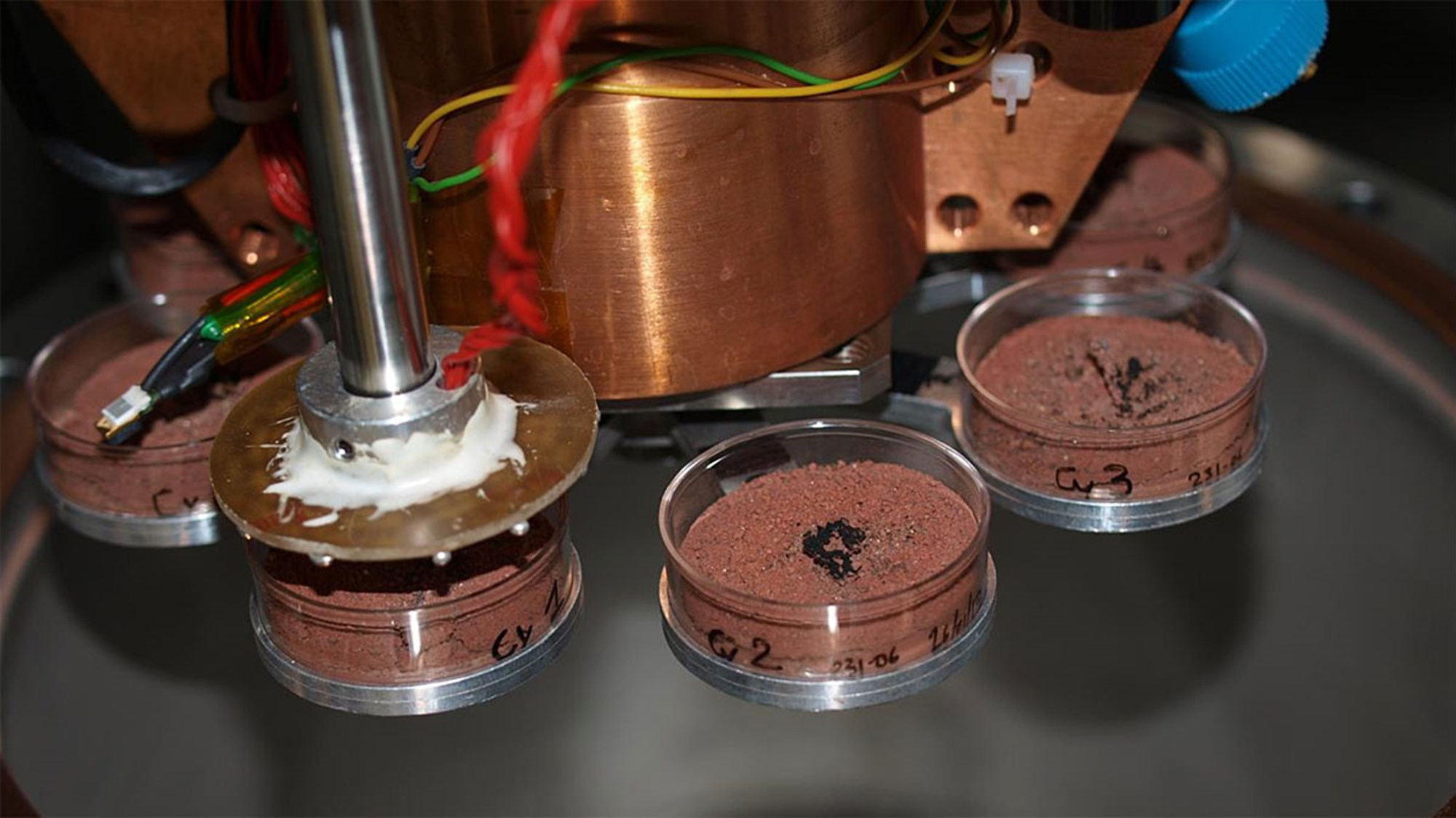 Organismen von der Erde können auf dem Mars überleben – derStandard.at