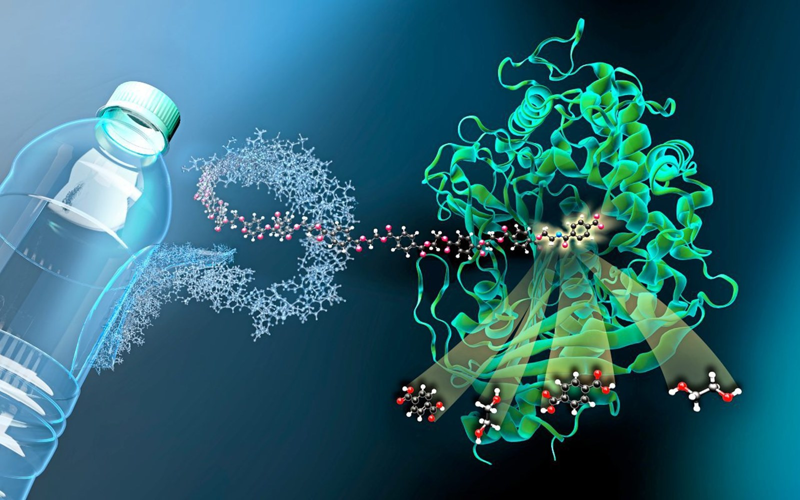 Enzym soll Plastikabfall recyceln