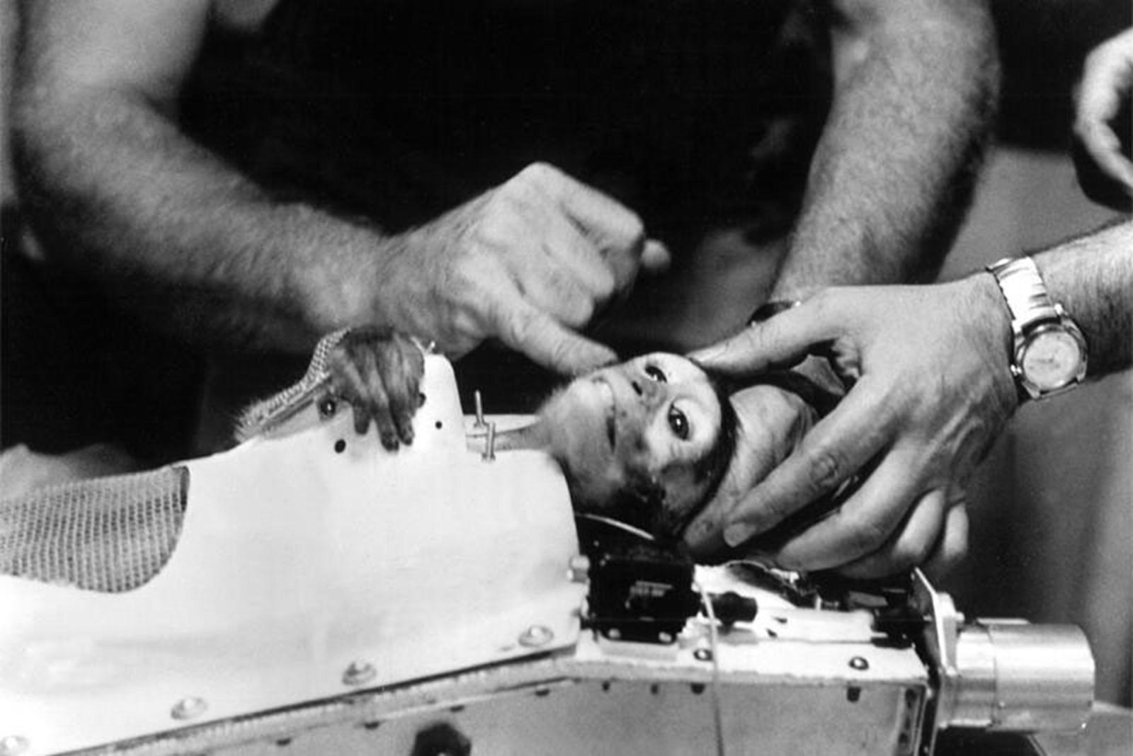 Vor 60 Jahren flogen zwei Affen ins All und verbrachten 9 Minuten in der Schwerelosigkeit