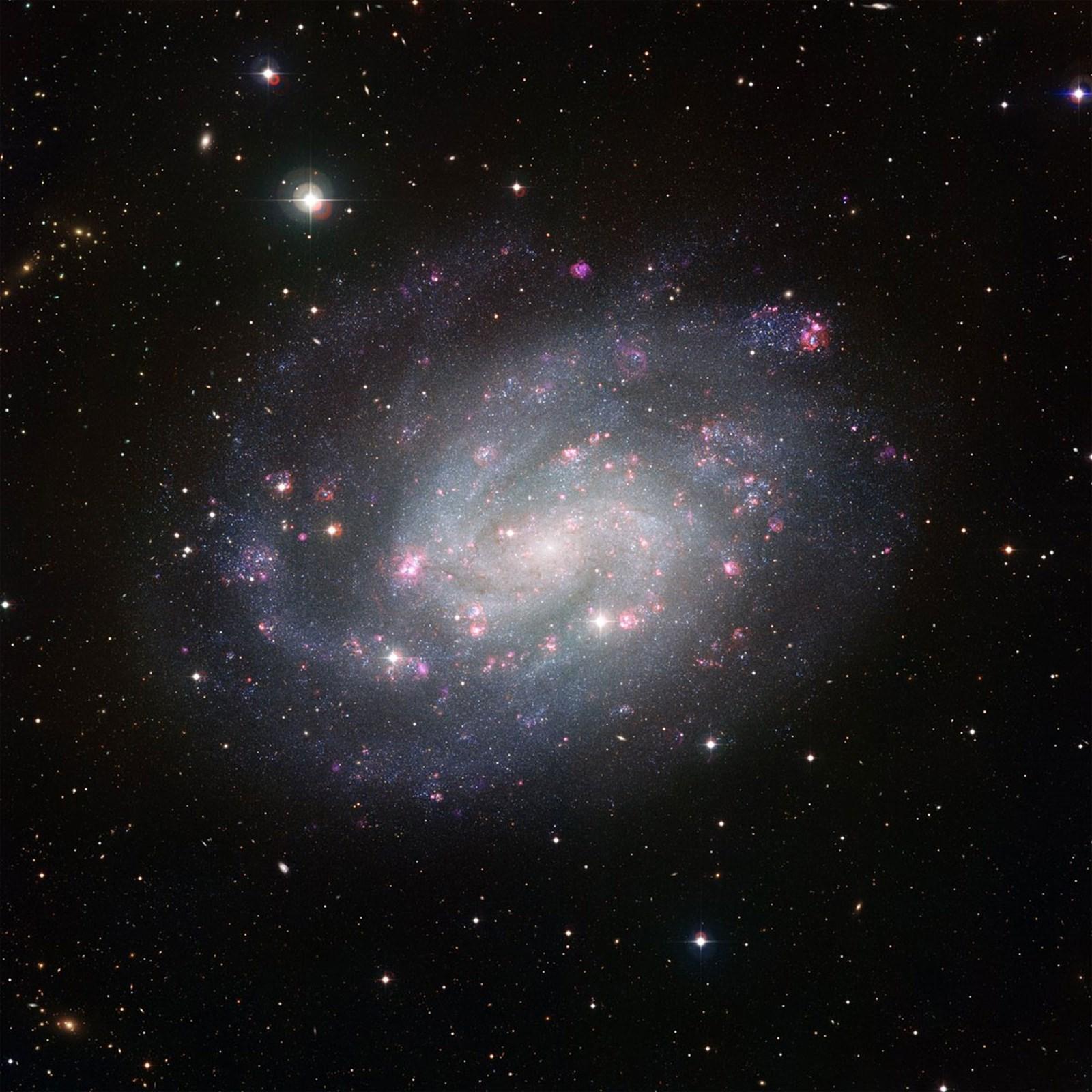 """Die Geburt von Sternen verläuft überraschend """"ineffizient"""""""