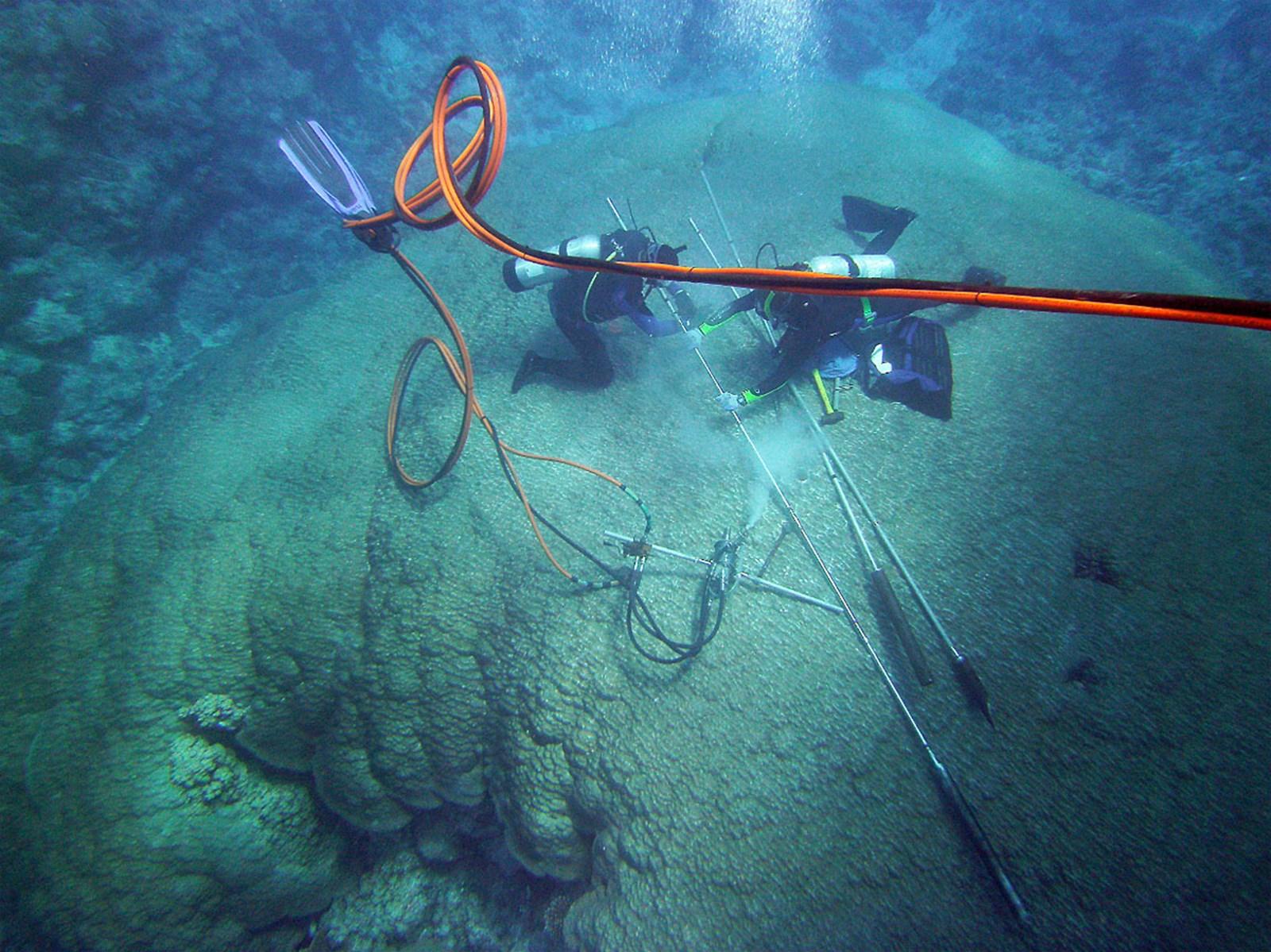 Tropische Steinkorallen spiegeln Beginn der Ozeanversauerung wider