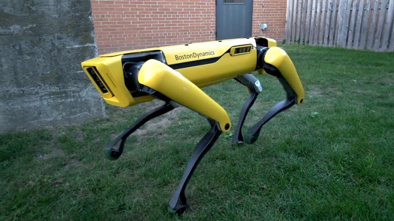 Spot: Boston Dynamics' lebensnaher Roboterhund kommt noch 2019 auf den Markt