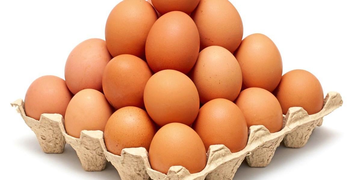 Solarium für Hühner lässt Vitamin-D-Gehalt von Eiern steigen