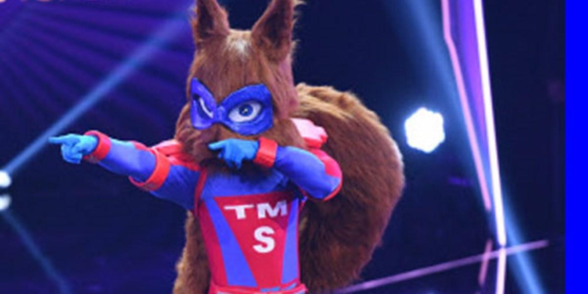 masked singer 2019 eichhörnchen
