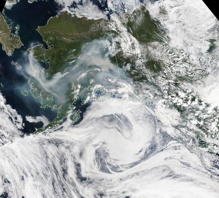 waldbrand arktis