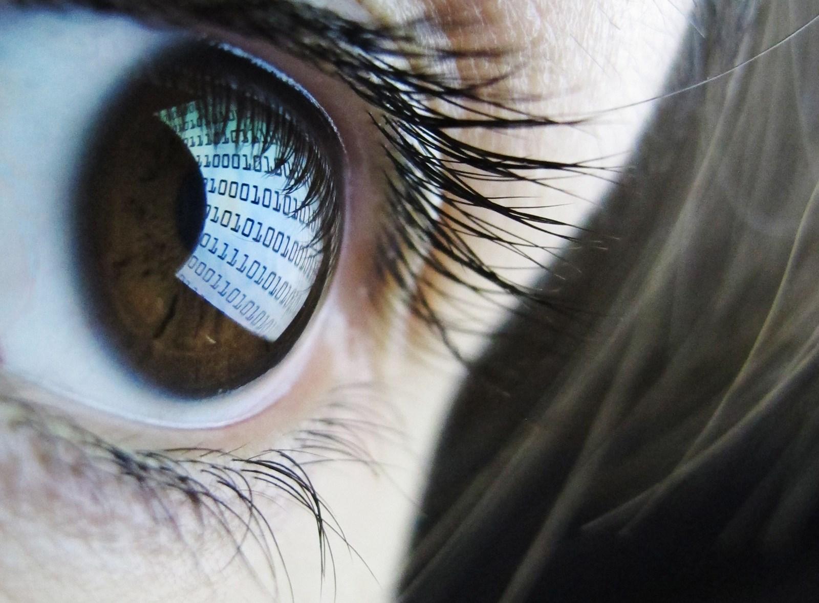 DataSpii: Browser-Erweiterungen spionieren Surfverhalten von Millionen Usern aus
