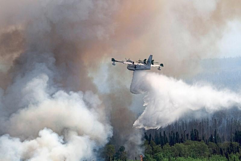 Waldbrände Arktis