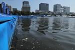 Fäkalbakterien im Wasser: Kein Schwimmen bei Tokio-Generalprobe