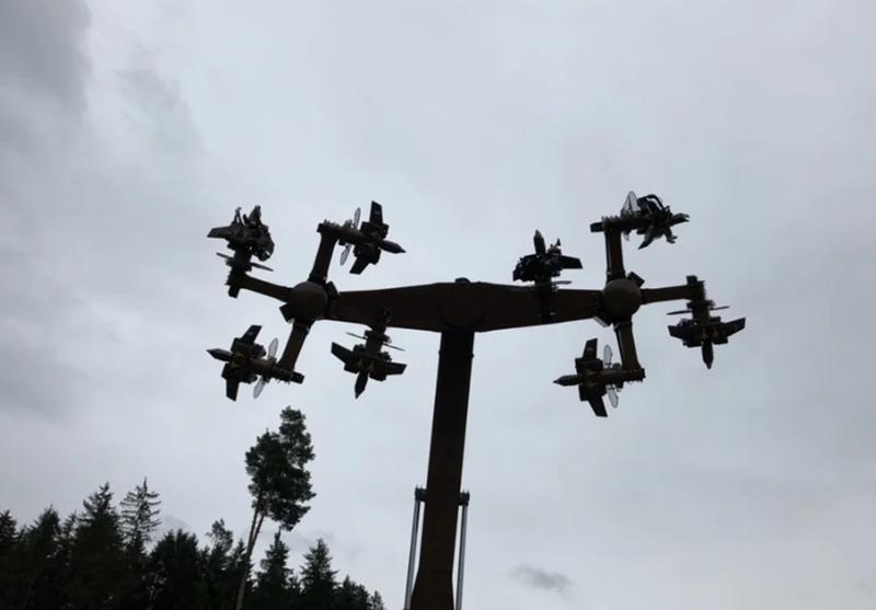 Adlerflug Schwarzwald