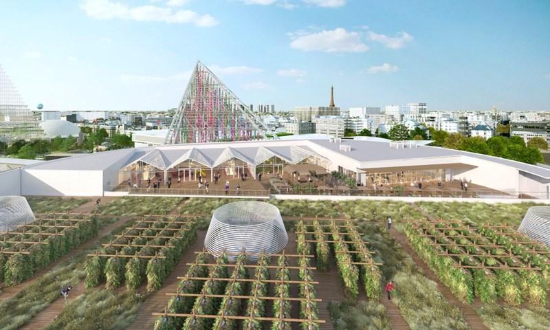 Gemüse von oben: Paris baut die größte Dachfarm der Welt