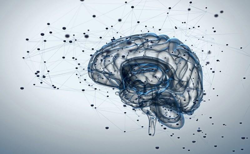 Wie verletzte Nervenfasern wieder heilen können