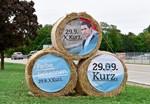 """ÖVP legt ausgewählte Daten offen, um """"Falter""""-Bericht zu widerlegen"""