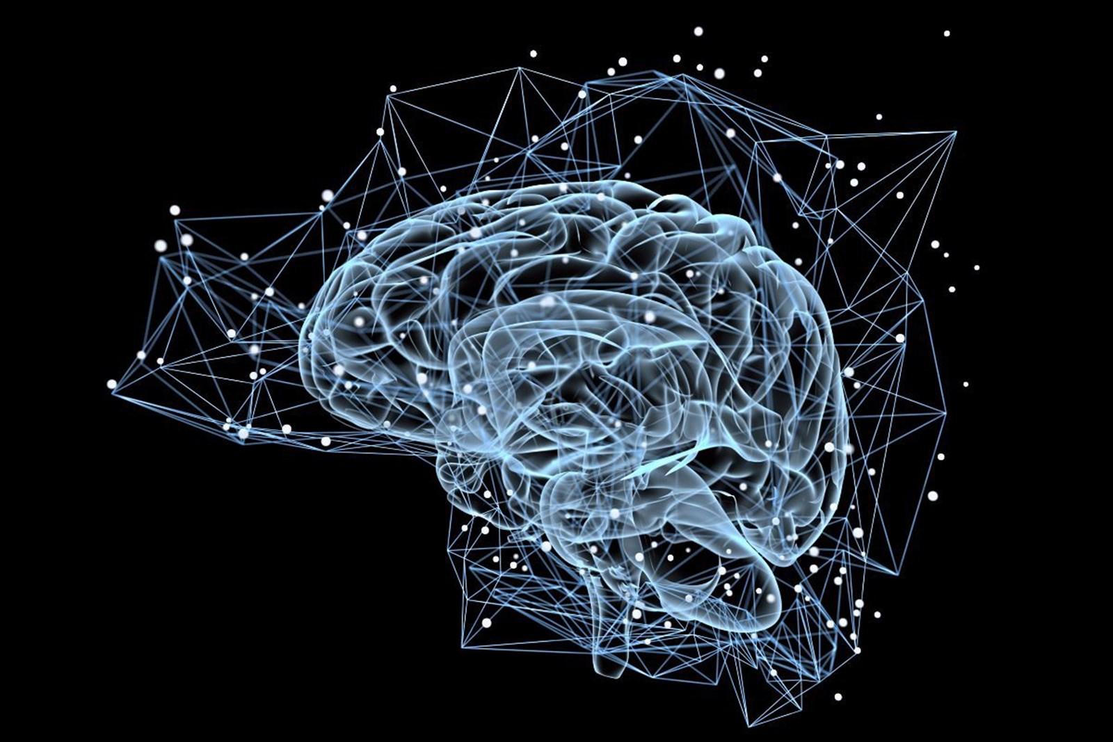 Blauer Kern im Gehirn hat große Auswirkungen auf Gedächtnis im Alter – derStandard.at