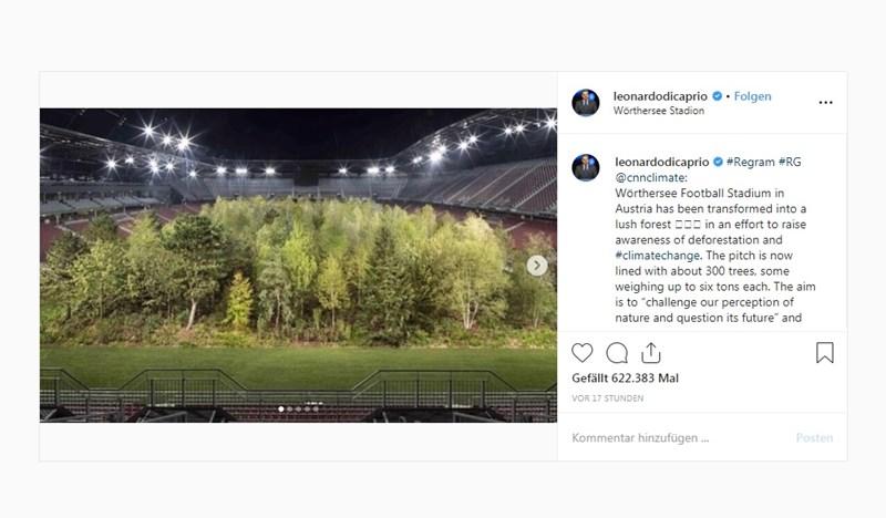 """Leonardo DiCaprio lobt Kärntner Kunstprojekt """"For Forest"""""""