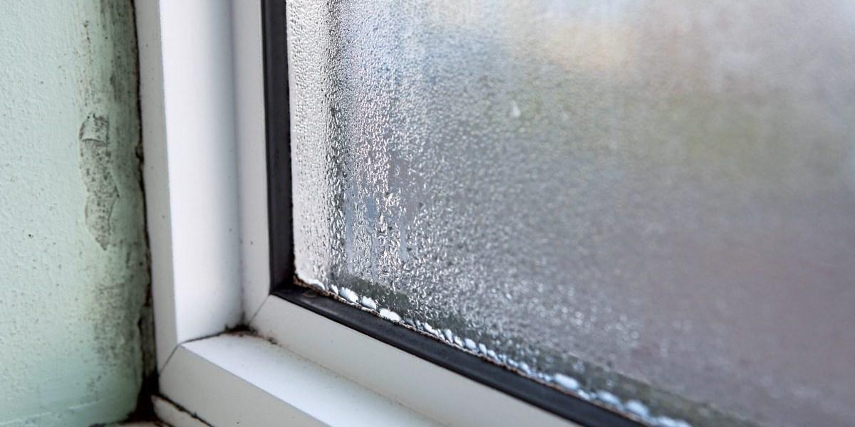 Warum Die Fenster Morgens Nass Sind Wenn Es Draussen Kalt Ist Bauen Wohnen Derstandard De Wirtschaft