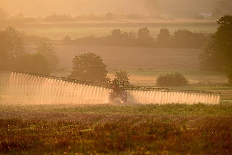 Monsanto setzte schädliches Pestizid trotz Verbot in Hawaii ein