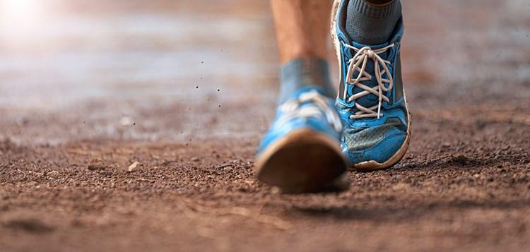 Diabetes verhindern: Darm entscheidet, ob Bewegung etwas bringt