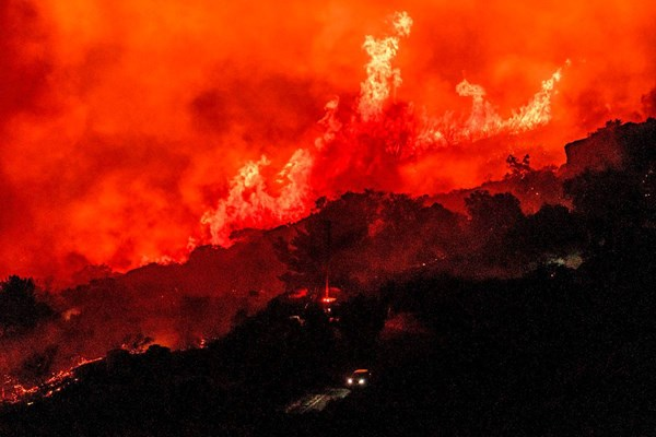 Foto: APA / AFP / KYLE GRILLOT