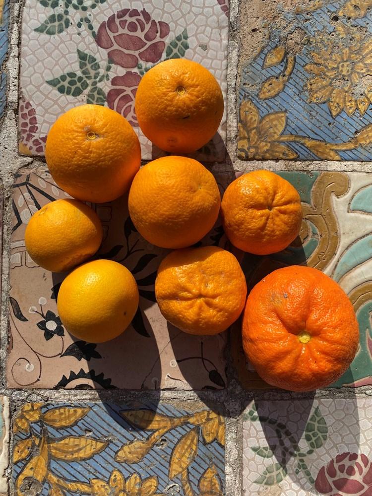 Fantastischer Orangensalat: Wintersonne zum Aufessen