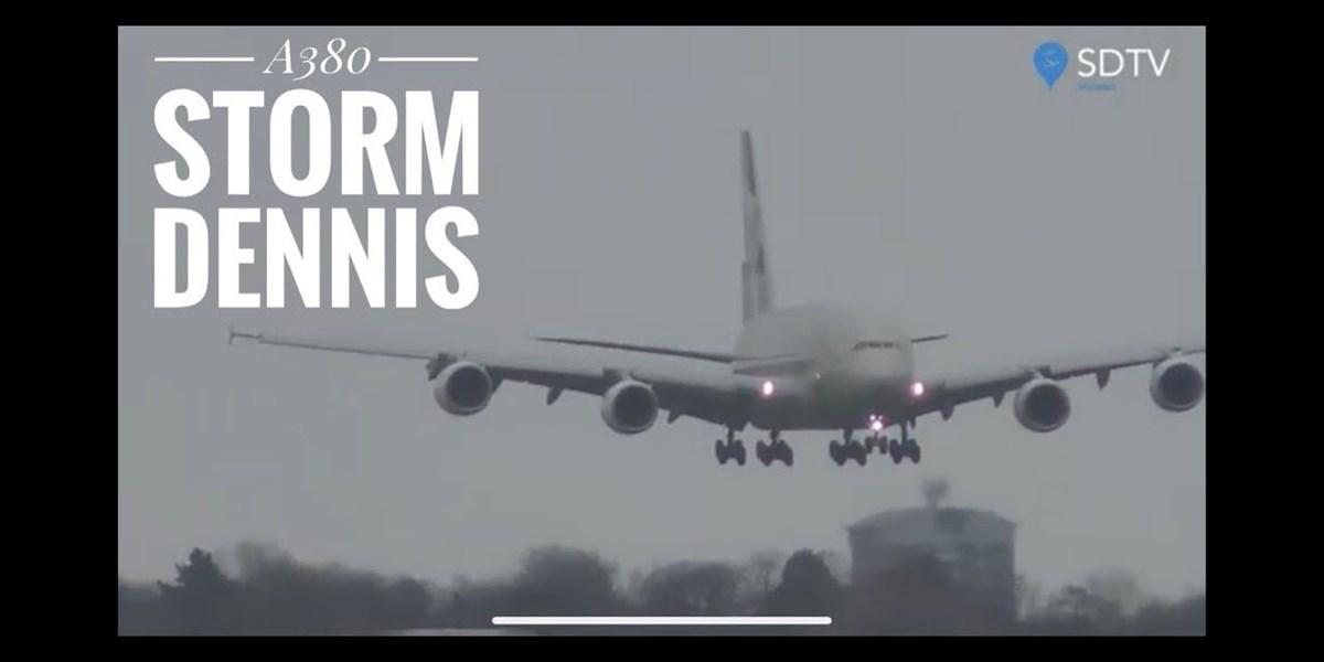 Harte Landung: Wenn der Sturm den Riesenvogel verweht
