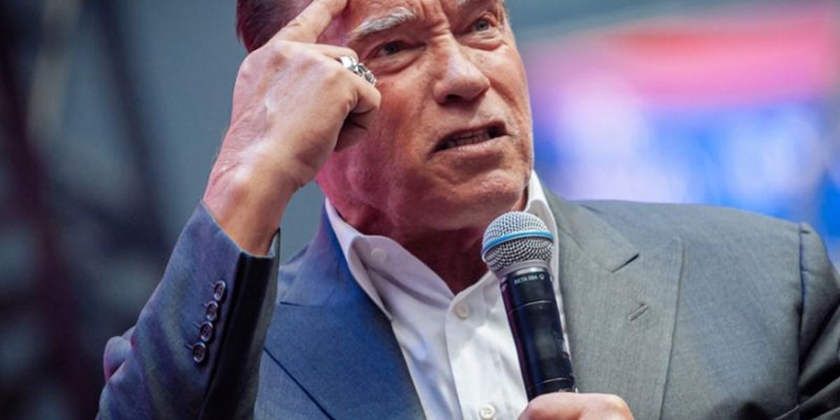 """Schwarzenegger klagt auf 10 Millionen Dollar: Gesicht auf Roboter """"schadet meinem wohlverdienten Ruf"""""""