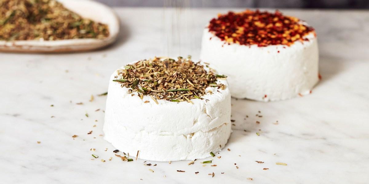 Modern Cheesemaker: Wie man daheim Käse herstellt