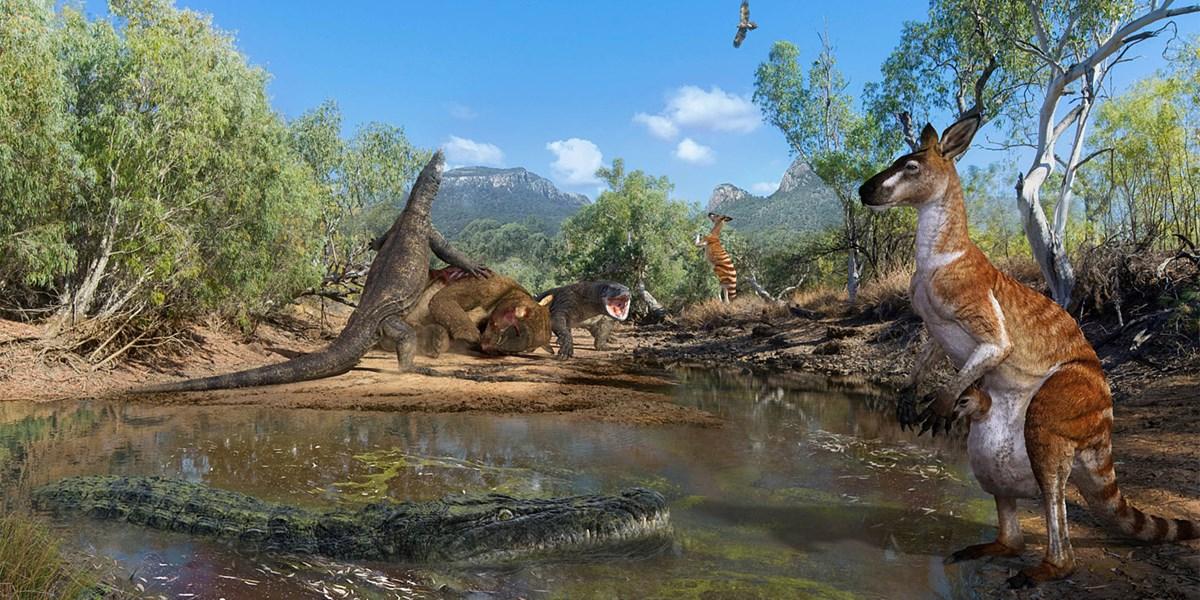 40.000 Jahre alte Giganten in Australien entdeckt