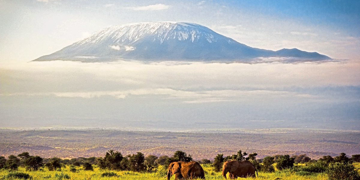 Kilimandscharo Film