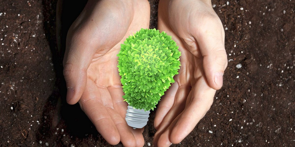 Steuerzuckerln sollen grüne Geldanlagen schmackhaft machen
