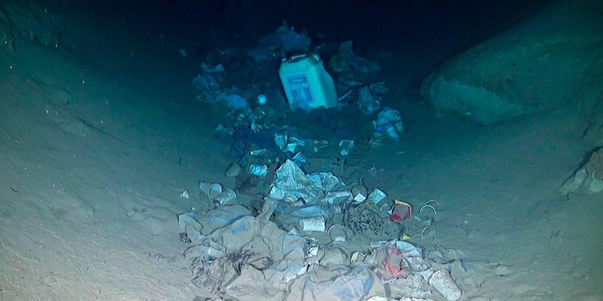 """99 Prozent des Plastikmülls im Meer """"verschwinden"""" in der Tiefsee"""