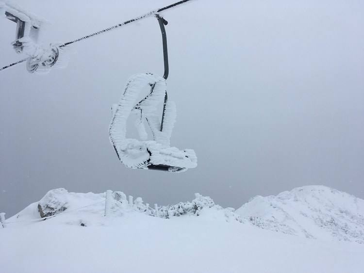 Bildergebnis für blizzard.kosten losen bilder