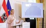 Neue Plagiatsvorwürfe gegen Aschbacher wegen einer in ihrer Amtszeit eingereichten Arbeit