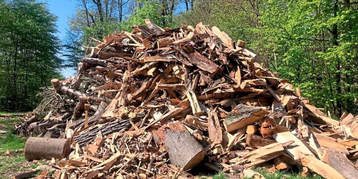 Grüner Wasserstoff aus Holz