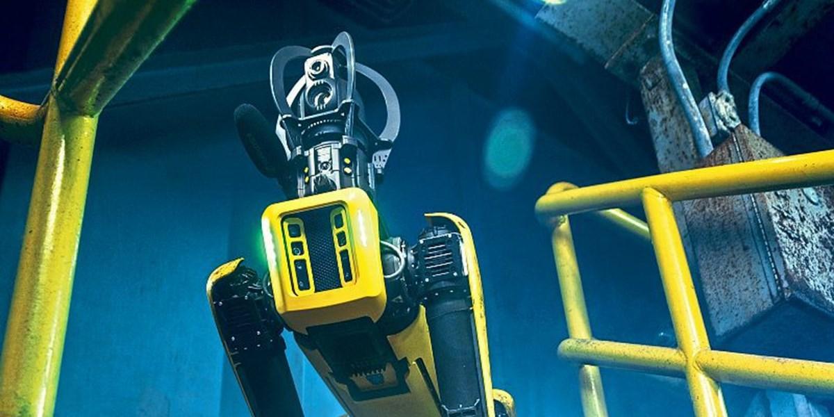 Mit dem Roboterhund auf der Baustelle