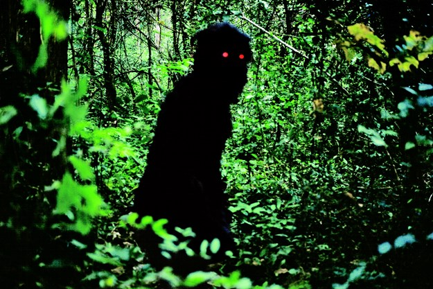 https://images.derstandard.at/t/M625/movies/2010/14013/160618223045392_10_uncle-boonmee-who-can-recall-his-past-lives_aufm05.jpg