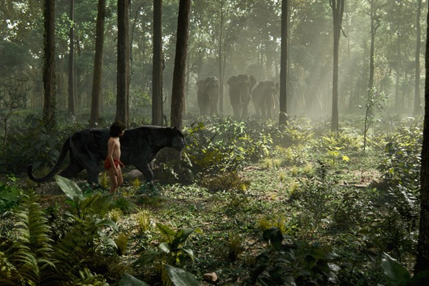 https://images.derstandard.at/t/M625/movies/2015/20478/160505223058206_8_the-jungle-book_aufm04.jpg