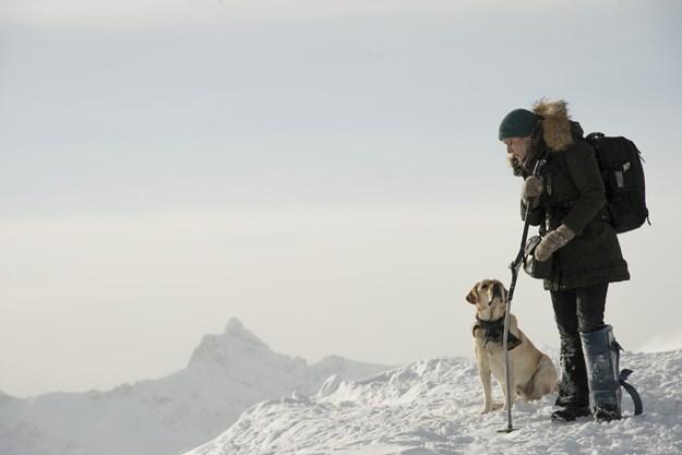 https://images.derstandard.at/t/M625/movies/2017/24667/180113223017540_12_zwischen-zwei-leben-the-mountain-between-us_aufm03.jpg