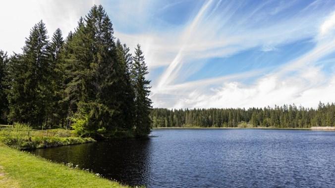 Wunderbare Naturlandschaft in Karlstift